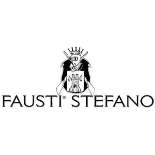 FaustiUSALogo