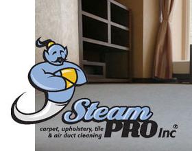 Steam Pro Inc.